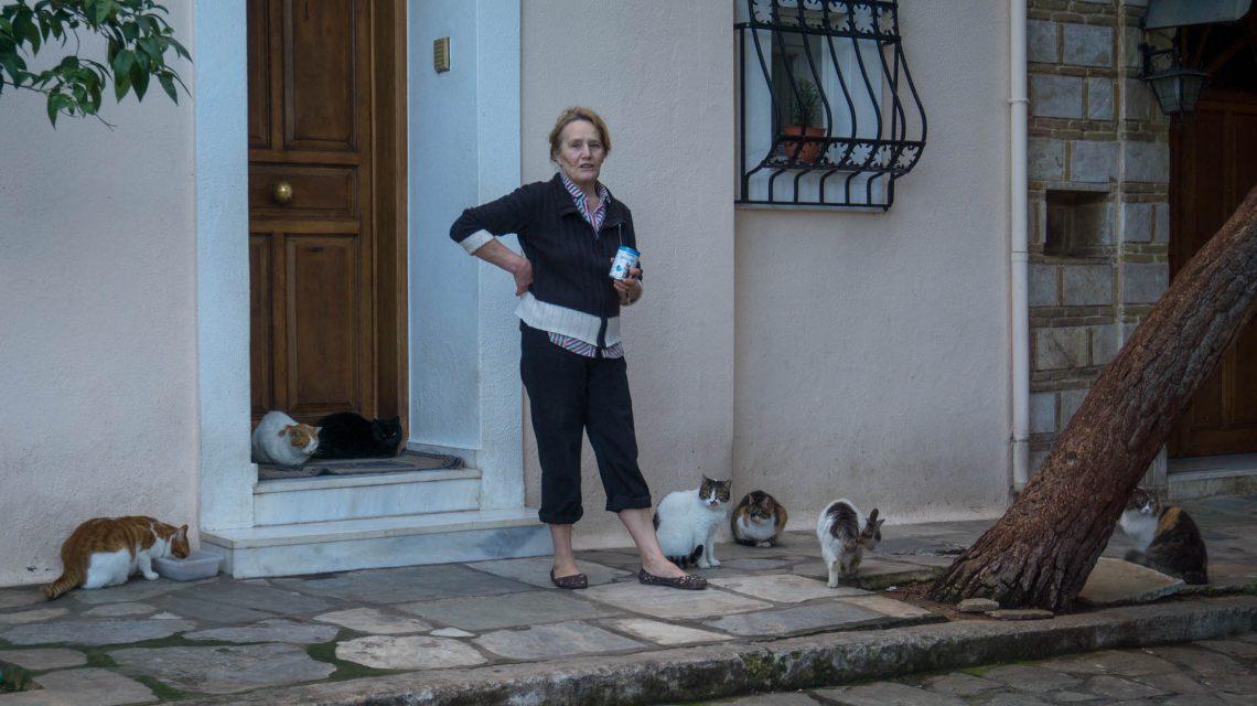 Atene gatti con gattara anafiotika grecia