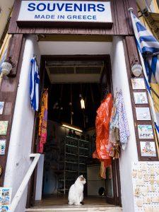 Atene gatto negozio di souvenir museo acropoli grecia
