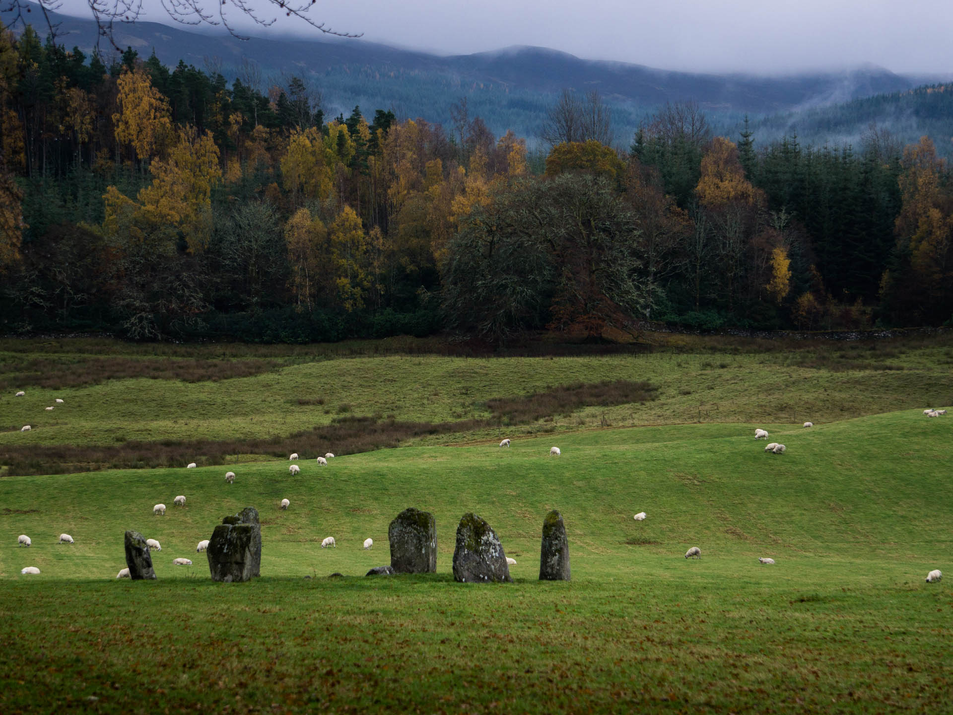 Killn Trossachs National Park standing stones