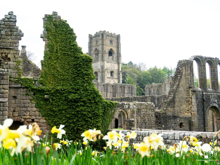 yorkshire rovine abbazia fountains