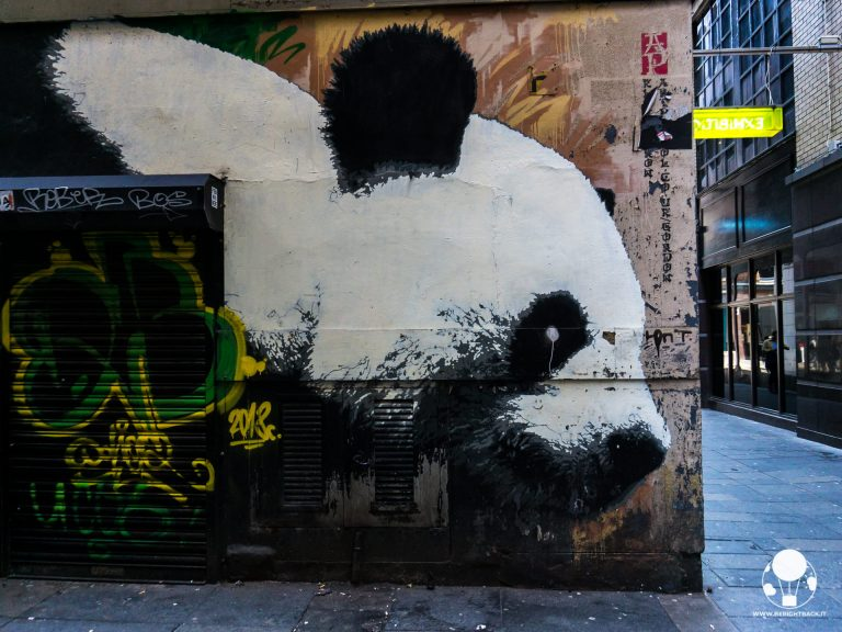 glasgow mural trail panda