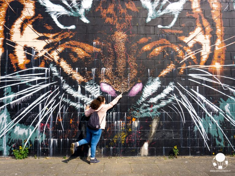 glasgow mural trail glasgow's tiger