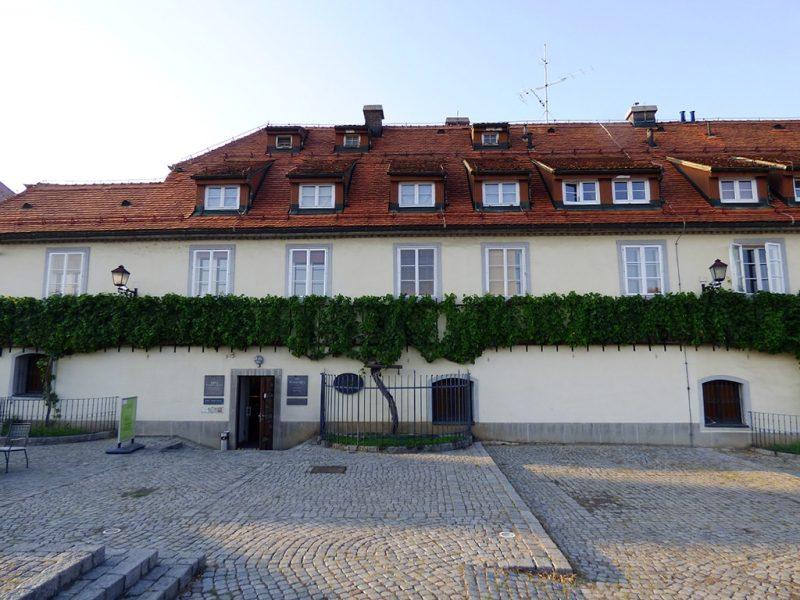 maribor marburgo slovenia casa vecchia vite ristorante