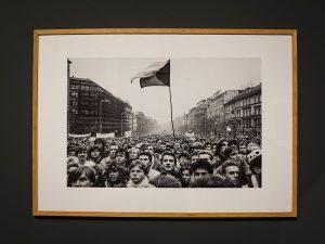 Rivoluzione di Velluto, Piazza Venceslao stracolma e la bandiera ceca che sventola