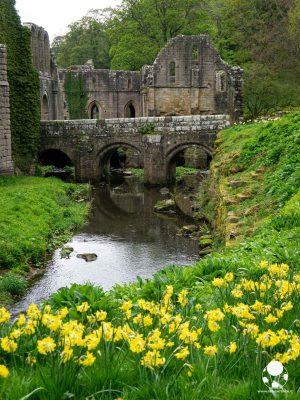 Uno dei ponti di accesso all'abbazia di Fountans