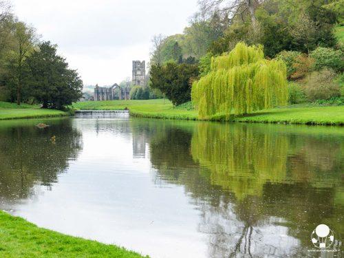 L'abbazia di Fountains ed il suo riflesso del fiume Skell