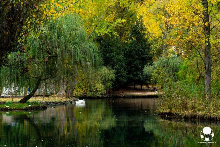 Le Fonti del Fiume Clitunno sono all'interno di un parco fatto in prevalenza da pioppi e salici