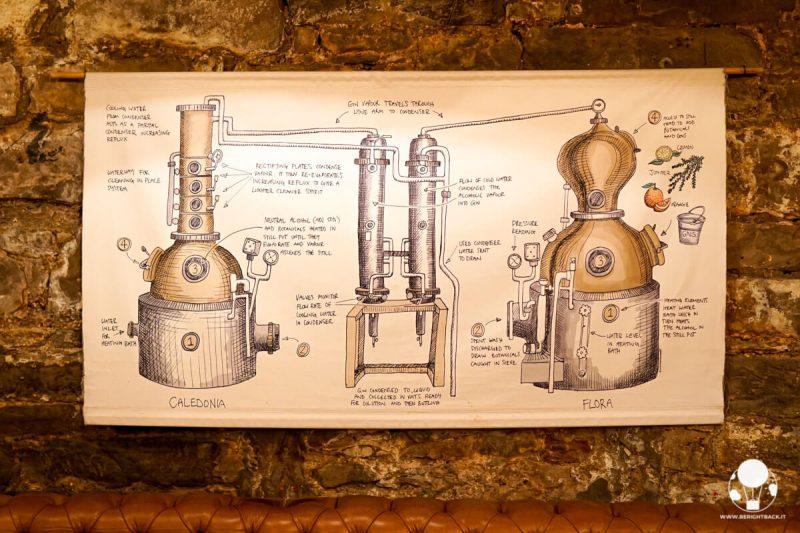 Disegno con processo di distillazione del gin