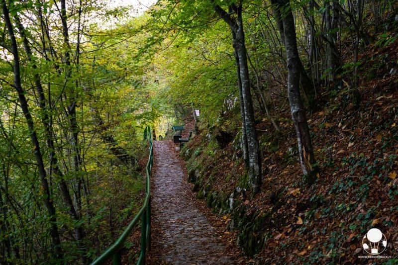 Grotta di Stopića, sentiero nel bosco per raggiungere l'ingresso