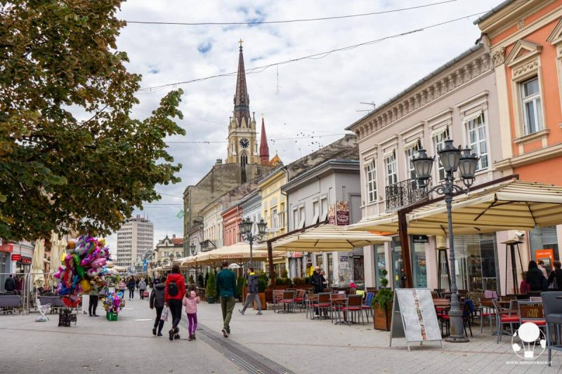 Zmaj Jovina, la via centrale di Novi Sad