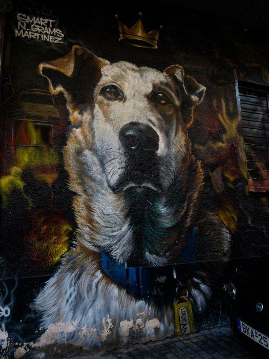 Atene street art psyri murales cane corona